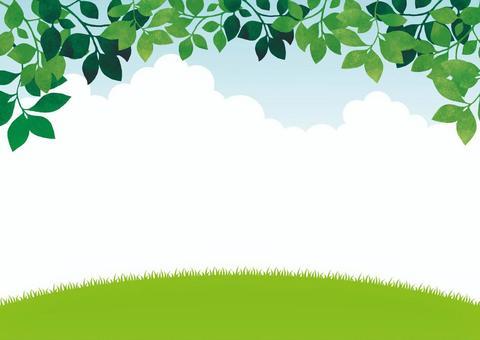 草地和樹葉