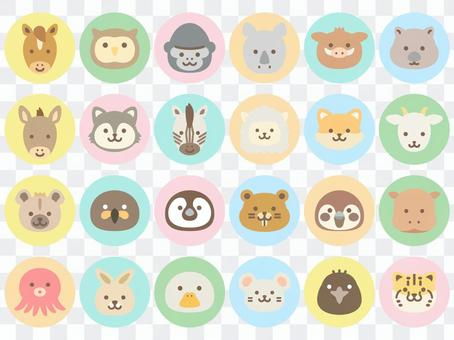 動物臉圖標2_圓形顏色