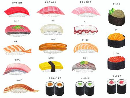 Sushi illustration set