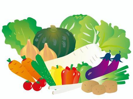 各種蔬菜56 _ CS 6