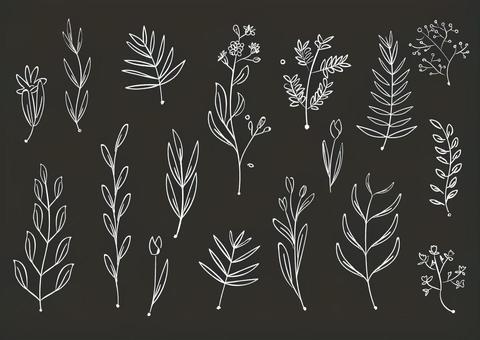 かわいい植物のイラスト
