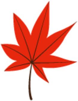 낙엽 05
