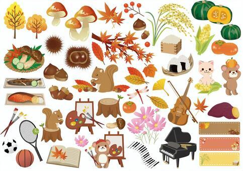 Fall summary