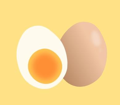 薄茶色卵斷面