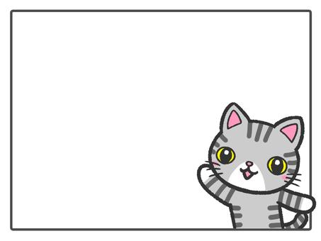 フレーム グレー猫