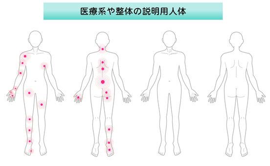 Medical whole body illustration
