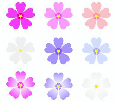 Shibaura various colors