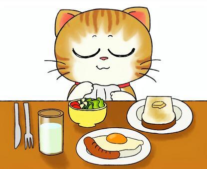 Cat's breakfast