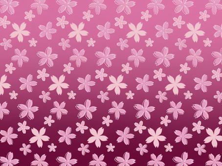 櫻花圖案背景/牆紙