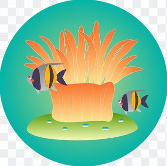 Sea anemone & moorish idol icon