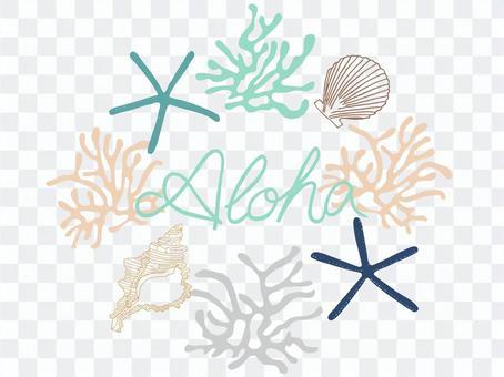 貝殼和珊瑚海洋結構/ Aloha