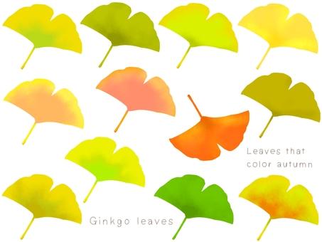 銀杏葉插圖集