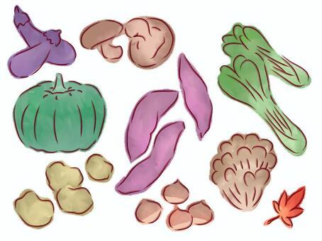 秋野菜 詰め合わせ セット