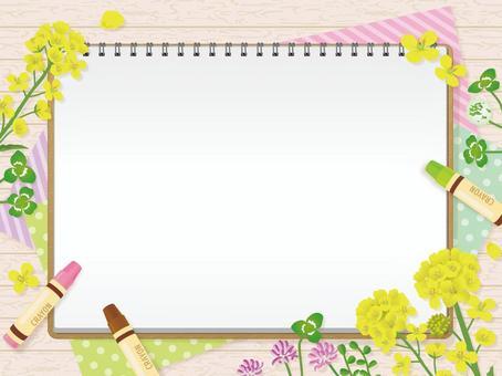 寫生和春天花油菜花三葉草3