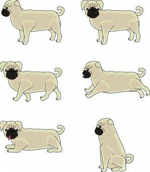 パグ 犬 小型犬 ペット 飼う