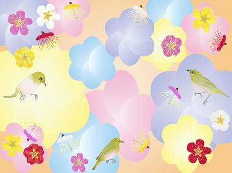 メジロに梅の花づくし