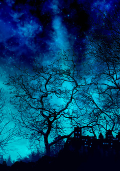 夜晚森林中的藍色城堡