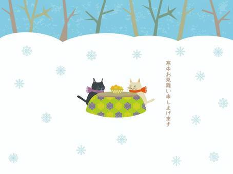 Kotatsu cat's cold medicine