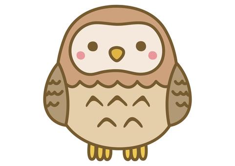 一隻可愛的貓頭鷹的插圖