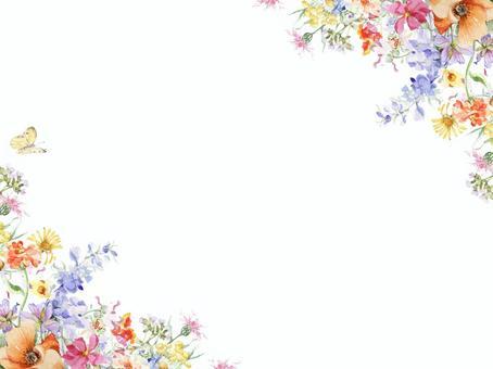 花框150  - 一個活躍的花框,包括zinia