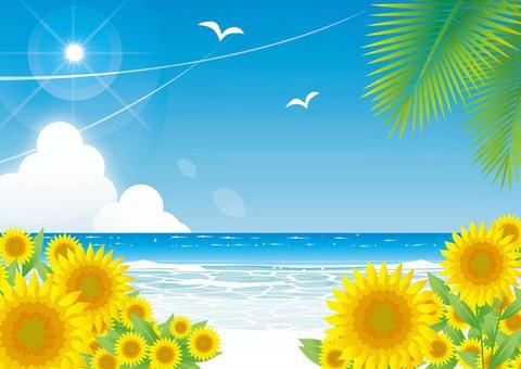 Midsummer beach and sunflower landscape