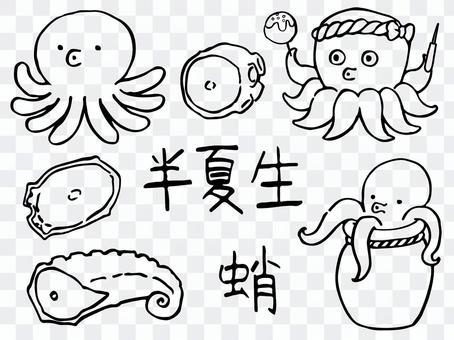章魚的插圖(線條藝術)