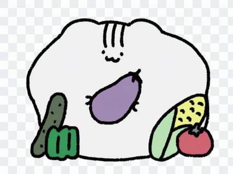 蔬菜和倉鼠