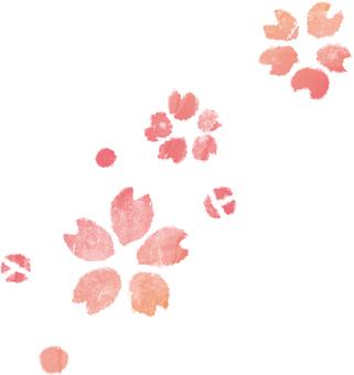 水彩的櫻桃樹
