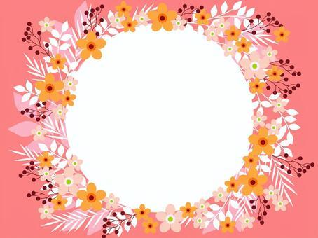 Wax Flower 09