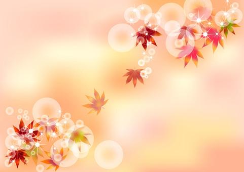가을 무늬 단풍 2