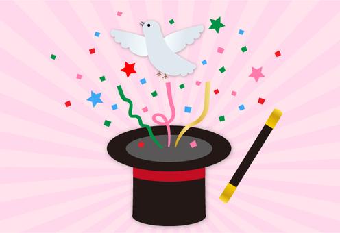 Magic · pigeon - 3