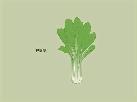 野澤菜葉子