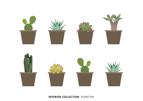 PLANT-09
