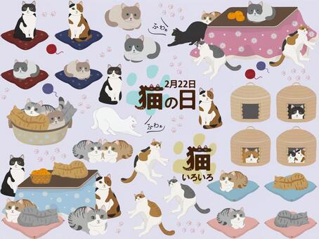 Various sets of cats