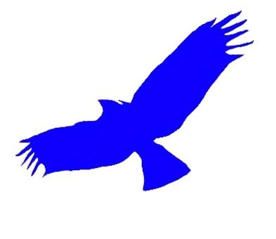 藍鳥的幸福