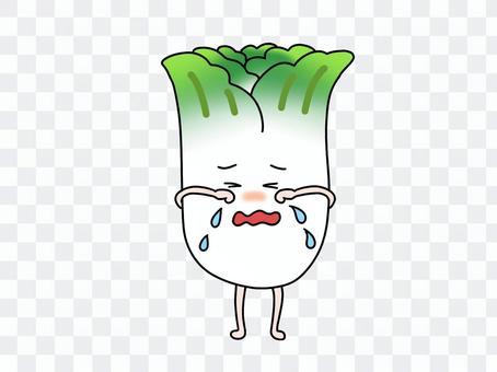 大白菜哭了沒有被吃掉
