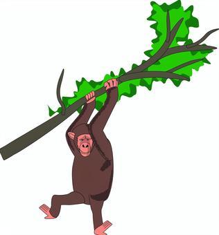 チンパンジー 猿 賢い 木