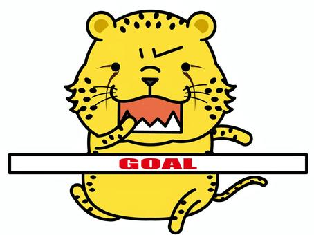Cheetah Marathon