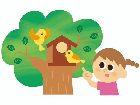 People _ Children's bird's nest box