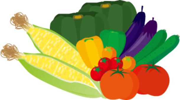 夏季蔬菜玉米,青椒,南瓜