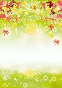 紅葉&銀杏42