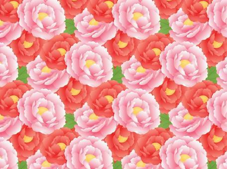 Peony pattern _ red peach