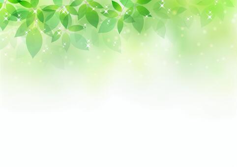 新鮮的綠色材料58