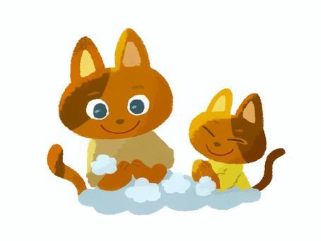 手洗いする猫の親子