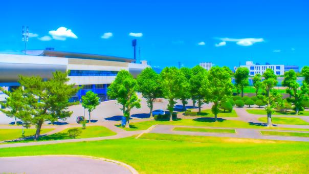公園和體育場