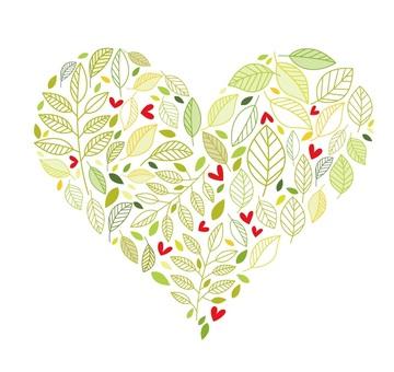 葉子11心臟