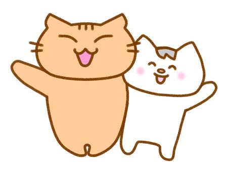 兩隻貓,揮舞著他們的手1