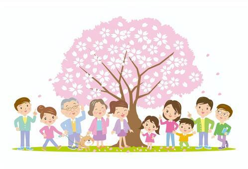 盛開櫻花盛開的人們