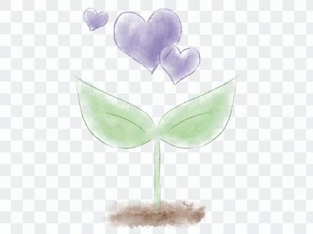 수채화의 떡잎과 보라색 하트