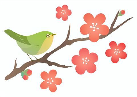 梅の花とメジロの春の素材